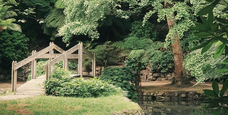 Ogród angielski aranżacja