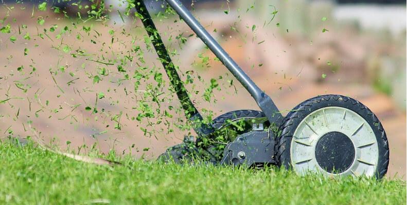 Koszenie trawnika przed domem