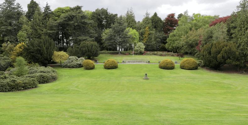 Jak dbać o trawnik w ogrodzie