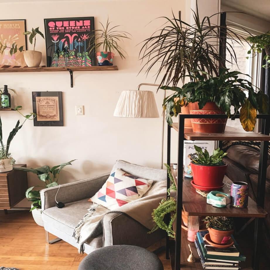 Najlepsze aranżacje roślinne w domu